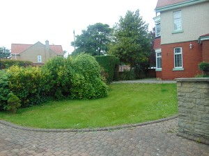 Lovely Mature Sunny South Facing Garden To Front