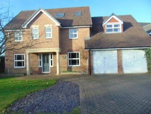 6 Bed House