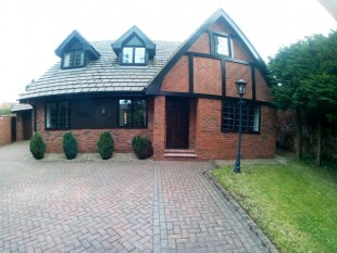 5 Bed House