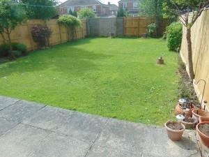 Lovely Sunny South Facing Rear Garden