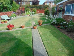 Beautiful Well Established Large Sunny Rear Garden