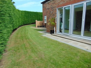 Lovely Sunny Private West Facing Rear Garden