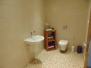 Fully Tiled Shower Room/Cloakroom