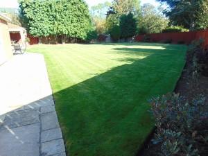Stunning Sunny South Facing Rear Garden