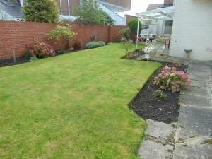 Lovely Large Walled Rear Garden
