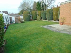 Lovely private rear garden