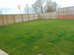 Large Sunny West Facing Rear Garden Which Is Not Overlooked