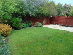 Beautiful Well Established Private Rear Garden