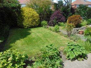 Beautiful Well Established Sunny Rear Garden