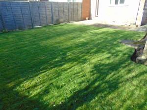 Sunny South Facing Rear Garden With Patio Area