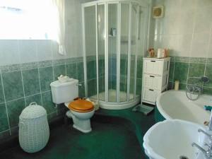 Fully Tiled En Suite