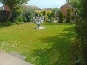 Beautiful Well Established Rear Garden