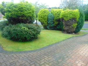 Lovely Well Established Garden to front