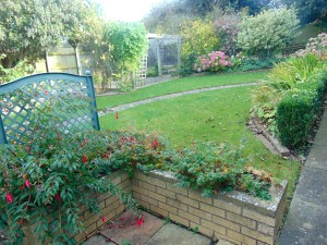 Beautiful Sunny Well Established Rear Garden